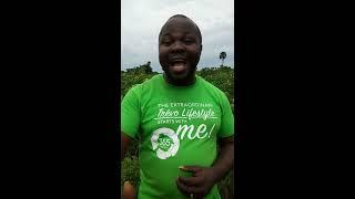 Cassava Farming Business Opportunity in Nigeria