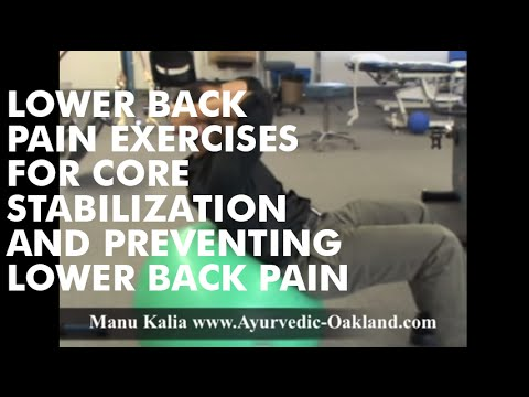 Lower back pain exercises for core stabilization and preventing lower back pain