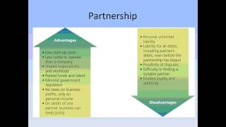 Business Studies Preliminary Lesson 3   classification of business