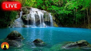 Relaxing Meditation Music 24 7 Relaxing Music Sleep Music Mediation Music Study Music
