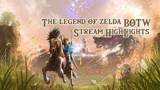 The Legend of Zelda (BOTW) Stream Highlights!!!