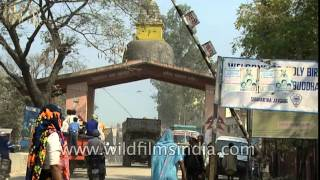 Where India ends and Nepal starts: Indo-Nepal border at Sonauli