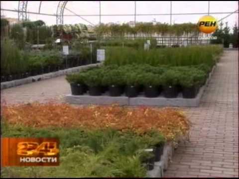 Открытие Садового центра в Юбилейном RenTV