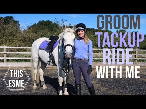 Groom and Tack up with me for Showjumping | Talk through | This Esme