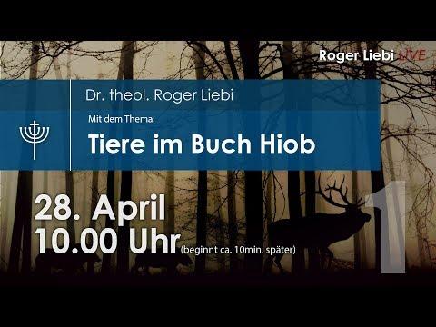 Tiere im Buch Hiob mit Dr. theol. Roger Liebi