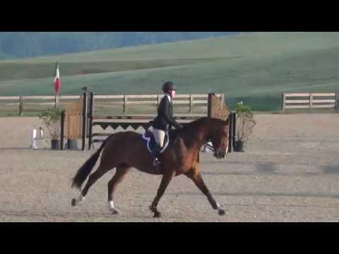 Anna Easton and Riyadh WIHS Jumper Phase August 16, 2014