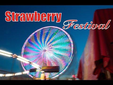 Strawberry Festival // 6-21-14