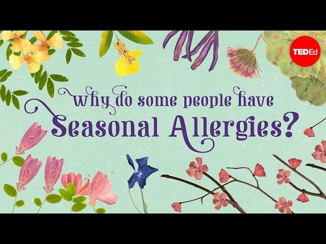 Why do people have seasonal allergies? - Eleanor Nelsen