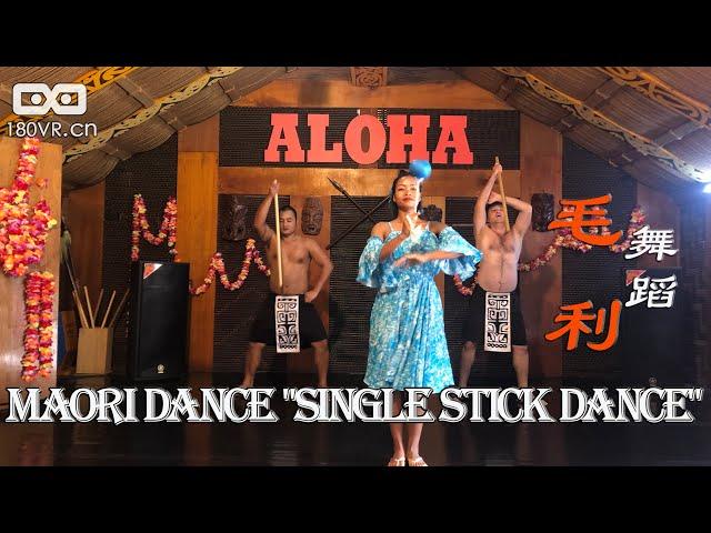 VR180 毛利人舞蹈 单棍舞 Maori dance - single stick dance
