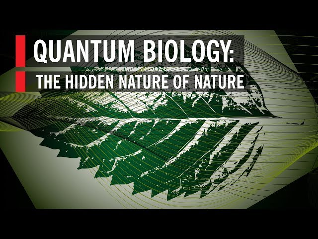 Quantum Biology: The Hidden Nature of Nature