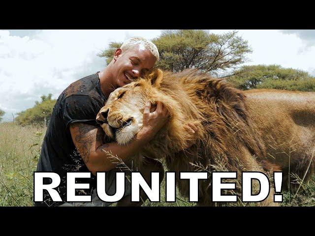 Dean Schneider - Reunited with the Lions
