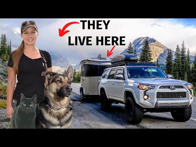 RV Tour 🚙 SOLO FEMALE Full Time RV Living in an Airstream Basecamp 👩 with a Dog and Cat 😸🐶