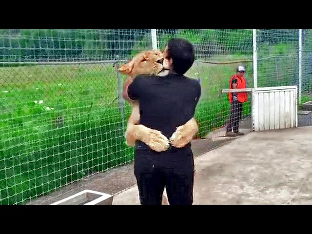 Animal Reunions with Owners After YEARS