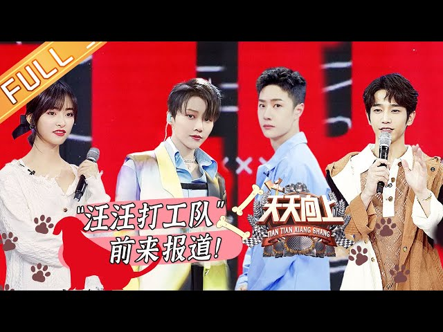 "Day Day Up ""Wangwang working team"" report!丨MGTV"
