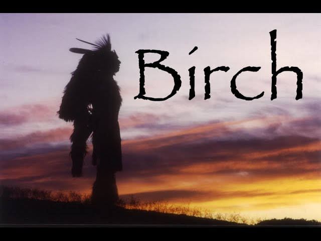 Ojibway Story of the Birch Tree