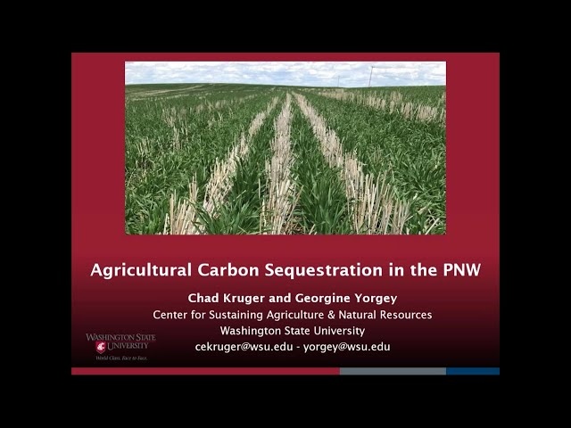 WADE 2020 Climate & Energy - Potential of Carbon Sequestration on Farm Land with Chad Kruger