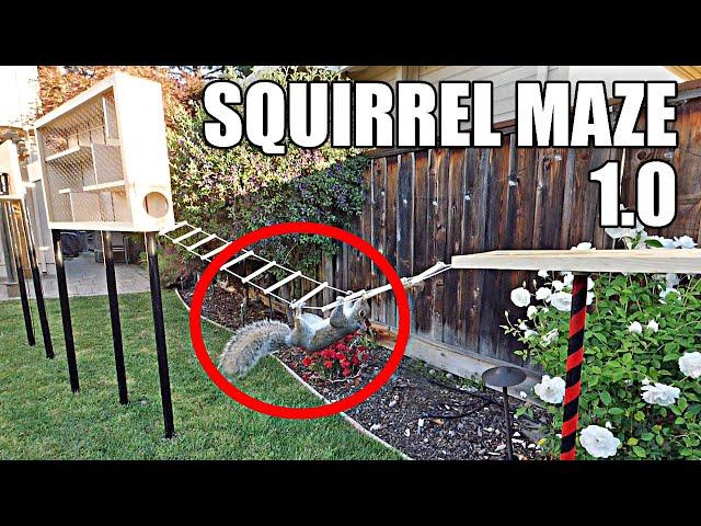 Backyard Squirrel Maze 1.0- Ninja Warrior Course