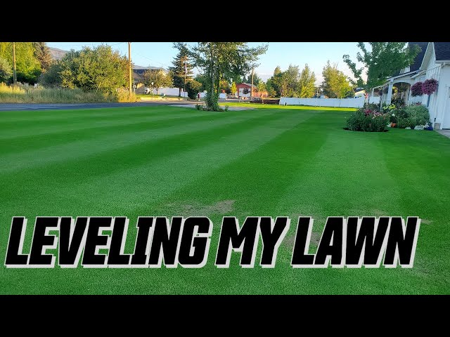 How to TOP DRESS your lawn for a FLAT LEVEL surface