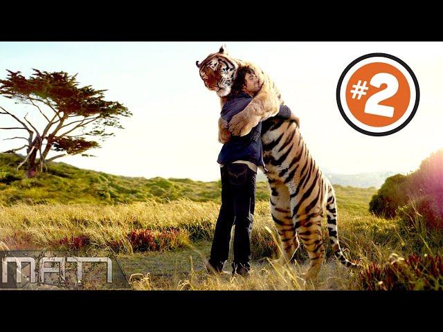 7 HEARTWARMING ANIMAL REUNIONS CAUGHT ON CAMERA - Part 2