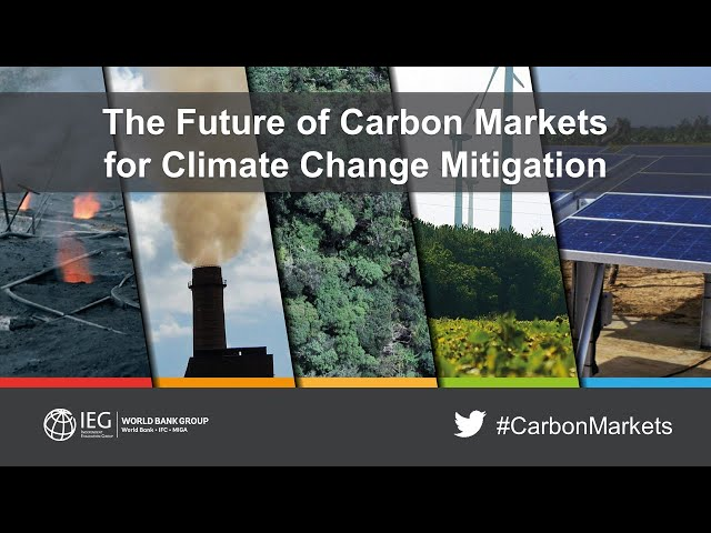 The Future of Carbon Markets for Climate Change Mitigation, February 5, 2019