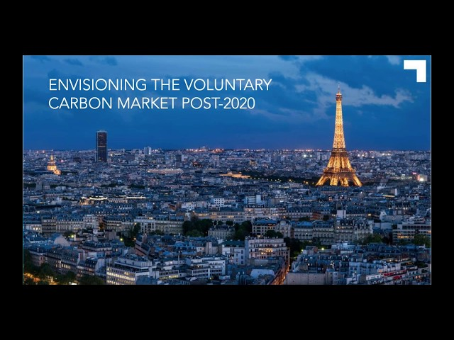 Envisioning the role of the voluntary carbon market post 2020  Public Consultation