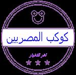 عاجل اجازة في جميع مدارس الإسكندرية غدا بسبب الطقس السيئ Youtube