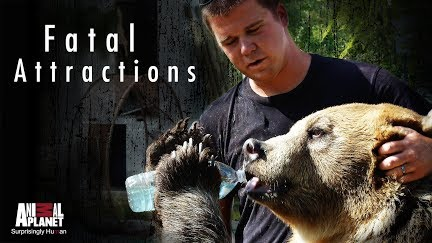Fatal Attractions Get Season 3 On You