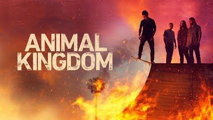 animal kingdom tv show season 3 start date