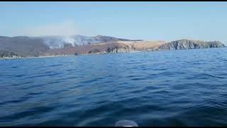 Пожар на полуострове Гамова