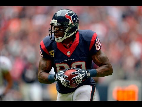 Andre Johnson 2014 Highlights || Tribute ||