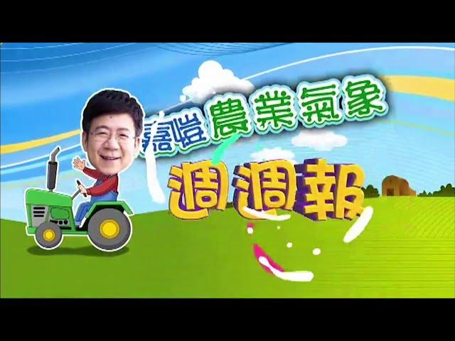 2020.10.26─嘉愷農業氣象週週報
