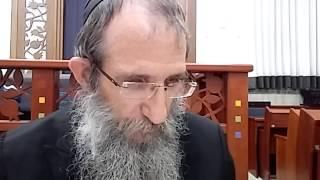 הרב ברוך וילהלם - תניא - אגרת התשובה - סיום פרק ט ותחילת פרק י