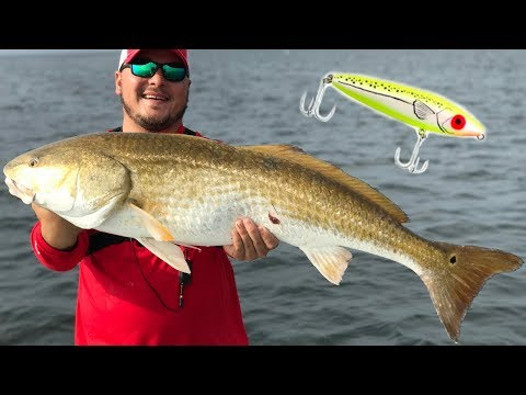 HUGE BULL REDFISH On A TOPWATER (new Personal Best)