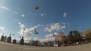 Судак в ноябре. Набережная. Осенний Крым.(В праздничный ноябрьский день в Судаке прекрасная погода, город залит солнцем люди гуляют по набережной...., 2016-11-06T20:43:13.000Z)