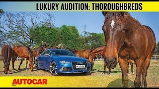 The Luxury Audition | Part 3 | Thoroughbreds