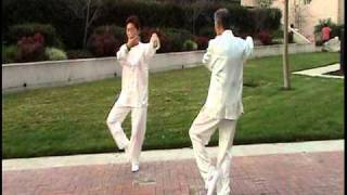 Two people mirror Tai Chi form 24