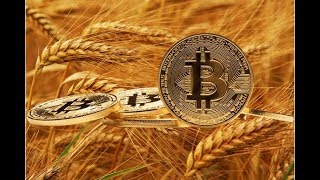 The Approaching Famine and Bitcoin Futures Creating New Wealth (487)
