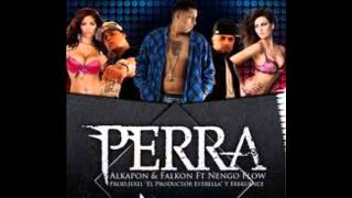 Download Alkapon y Falkon Ft  Nengo Flow - Perra 2 8 MP3 song and Music Video