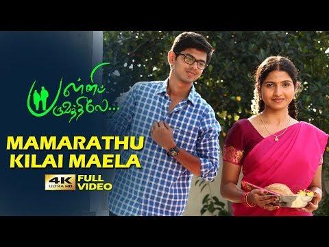 Mamarathu Kilai Maela Full Song | Pallipparuvathilae | Vijay Narayanan | Vasudev Baskar