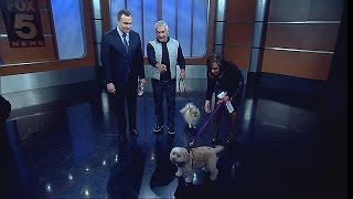 Dog Expert Cesar Millan On Training Humans