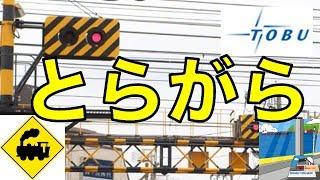 東武スカイツリーライン鐘ヶ淵駅前にある豪快な虎柄踏切 機材:Canon EO...