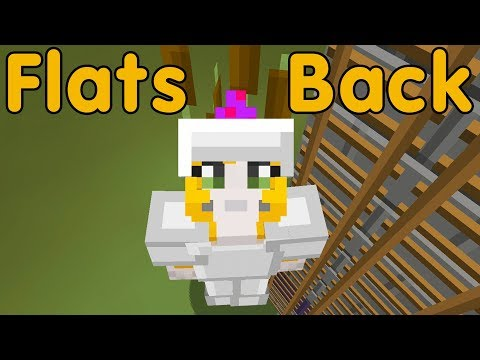 Minecraft PS4 - The Craft - Flats Back (19)