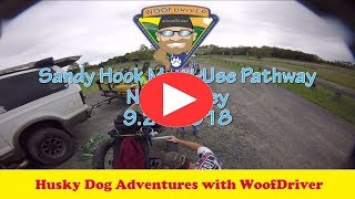 Dog Videos | WooFDriving The Sandy Hook Multi-Use Pathway NJ | Husky Dog Adventure