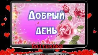 Добрый деньМилые Пожелания Доброго дня для ДевушкиВидео Открытка Добрый День.