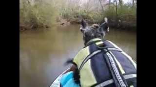 Tytus Drives Ski On Creek