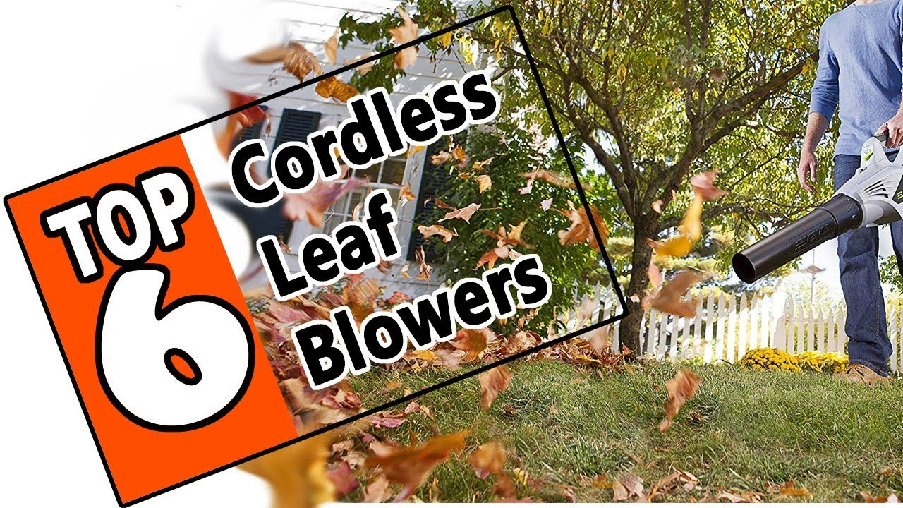 Best Battery Blowers 2019 🌻 6 Best Cordless Leaf Blower Of 2019   The Best Battery Or Gas