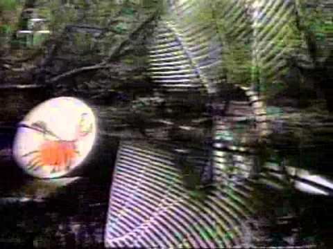 Movimento Mangue Beat 1995 - Chico Science e Nação zumbi, Mundo Livre S.A