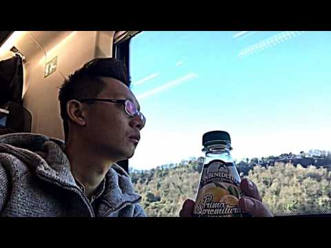 Frecciarossa High Speed Train 9518 from Rome to Florence-Italy (February 2017)