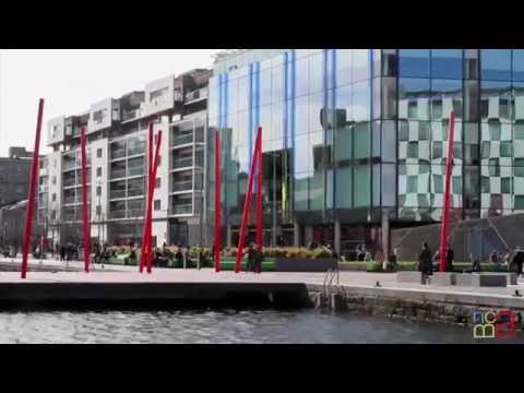 ''Details of Dublin'' -  Grand Canal Square
