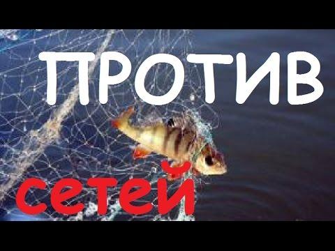 Мы против рыболовных сетей картинки